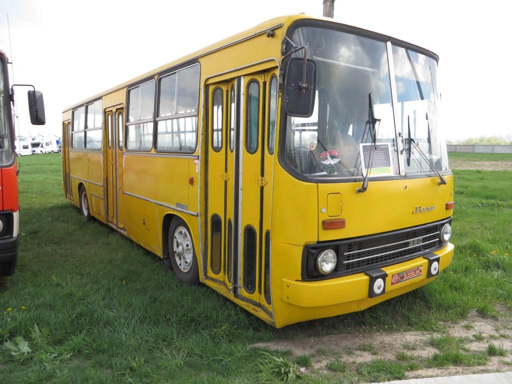 автомобілі, OldCarLand-2016, Ikarus 260