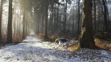 Снігопад-2016: Львів не готовий